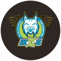 Hockey puck with logo of Slovenian National Hockey team