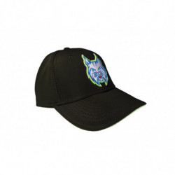 Slovenian Hockey Team Fan cap
