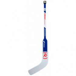 Warrior Swagger Mini composite hockey stick