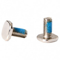 Bauer screw with square head